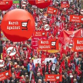 Παγκόσμια Πορεία κατά της Monsantoσήμερα