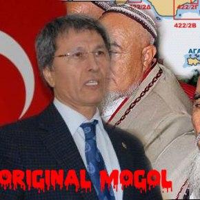 Τουρκός βουλευτής αμφισβητεί την ελληνικότητανησιών