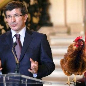 Το…«κοκκοράκι» κάνει ο Τούρκος«λεβέντης»