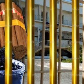 Tαχυφαγείον… ο Κορυδαλλός. Από πούρα Αβάνας μέχρι καπνιστό σολομό περιλαμβάνουν οιπαραγγελίες