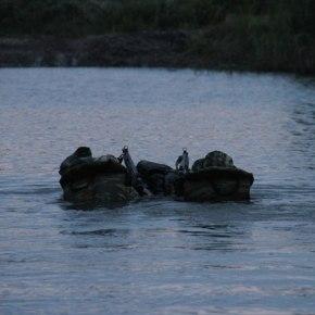Το κακό είναι οτι ετούτοι περνάνε το Ποτάμι και νύχτα και ο Μετέτης την…Φοβάται τη νύχτα!