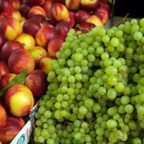 Ανακοινώθηκε η επίσημη λίστα των προϊόντων του ρωσικού εμπάργκο Περιλαμβάνει κρέατα, ελιές, ψάρια, θαλασσινά, γαλακτοκομικά και οπωροκηπευτικά. Εκτός το λάδι και τοκρασί