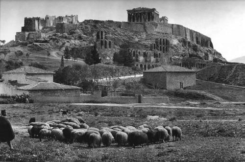 Akropolispalia