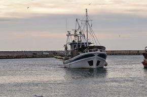 Αλεξανδρούπολη: Τουρκική ακταιωρός προσέκρουσε σε Ελληνικό αλιευτικό σκάφος (Φωτό και Ηχητικά αποσπάσματα)