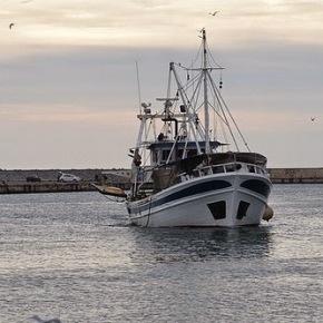 Αλεξανδρούπολη: Τουρκική ακταιωρός προσέκρουσε σε Ελληνικό αλιευτικό σκάφος (Φωτό και Ηχητικάαποσπάσματα)