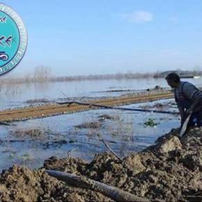 Επιχείρηση για απεγκλωβισμό λαθρομεταναστών στον ποταμόΈβρο