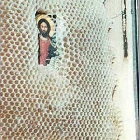 Συγκλονιστικό: Οι μέλισσες σέβονται τις ΆγιεςΕικόνες