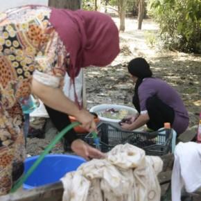 Οι ενέργειες του δήμου Αθηναίων για την εγκατάσταση των προσφύγων στονΕλαιώνα