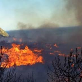 Χίος: Λαθρομετανάστες έβαλαν φωτιά σε ολόκληρη νησίδα στις Οινούσσες για να… ζεσταθούν! – Τραυματίστηκεπυροσβέστης