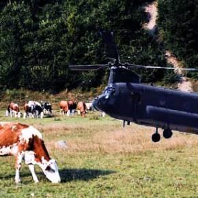 Δείτε που προσγειώθηκε το ΣΙΝΟΥΚ του Καμμένου στη Κώ (video)…Σε χωράφια με ταΓελάδια!