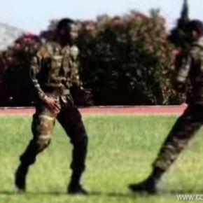 Ξεχάστε ό,τι ξέρατε! Αυτή είναι η νέα πολεμική τέχνη του Ελληνικού Στρατού…(ΒΙΝΤΕΟ)