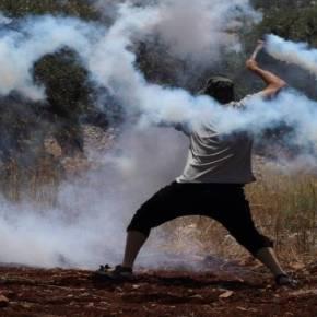 Μάχες στην Κω: Οι πολίτες αντιστέκονται στην ισλαμική εισβολή (φωτό) – ΒΙΝΤΕΟ ΑΠΟ ΤΙΣ ΣΥΓΚΡΟΥΣΕΙΣ ΣΤΟ ΝΗΣΙ ΓΙΑ ΤΑ HOT SPOT–