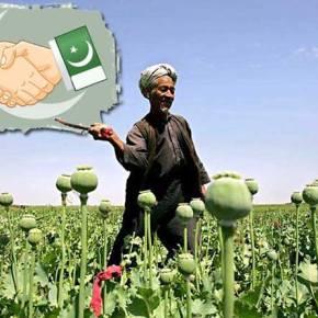 Τουρκικά εργαστήρια μετατρέπουν το αφγανικό όπιο σε ηρωίνη για αποστολή στηνΕυρώπη