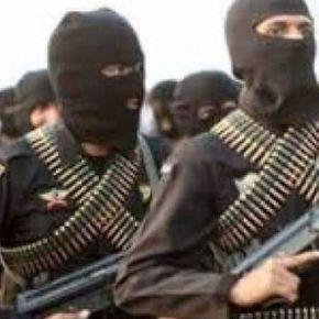 """Στρατηγός Ζιαζιάς: """"Ο πόλεμος κατά της τρομοκρατίας δεν μπορεί να είναι μόνοστρατιωτικός"""""""