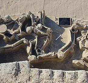 ΓΡΙΦΟΣ ΓΙΑ ΤΟΥΣ ΑΡΧΑΙΟΛΟΓΟΥΣ: Ομαδικός τάφος με 1500 σκελετούς αλυσοδεμένους βρέθηκε στο Φάληρο(ΦΩΤΟ)
