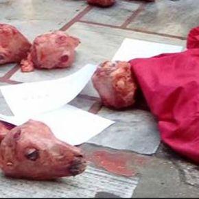 ΣΟΚ ΣΤΟΝ ΠΕΙΡΑΙΑ: Άγνωστοι πέταξαν δέκα κεφάλια ΣΦΑΓΜΕΝΩΝ ΑΡΝΙΩΝ στην είσοδο του Μητροπολιτικού Ναού της ΑγίαςΤριάδας!!!