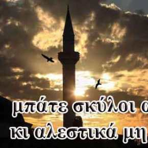 ΠΟΘΕΝ ΕΣΧΕΣ στη Θράκη δεν υπάρχει; Αλόγιστες αγορές γης απόμουσουλμάνους