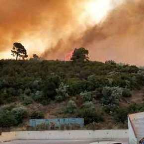 Ανεξέλεγκτη μαίνεται η μεγάλη πυρκαγιά στην περιοχή του Μαρμαρά Χαλκιδικής(Εικόνες)
