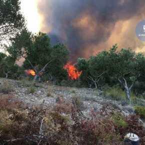 Καίγεται η Ρόδος …Επιχειρούν 4 αεροσκάφη και 4 Ελικόπτερα!(video)