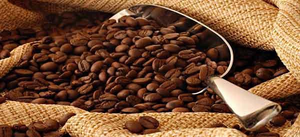 coffeebeans-600x275