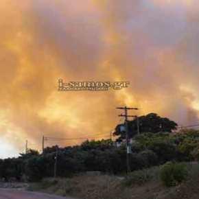 Συναγερμός στη Σάμο: Στις φλόγες το νησί – Ανεξέλεγκτα τα πύρινα μέτωπα (φωτό, vid)(upd)