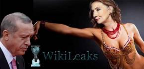 Ο ΕΡΝΤΟΓΑΝ ΚΑΙΕΙ ΤΗ ΧΙΛΑΡΙ: Συγκλονιστικές αποκαλύψεις από ταWikileaks