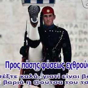 ΑΠΙΣΤΕΥΤΗ ΠΡΟΚΛΗΣΗ! Αλβανίδα προς Ελληνίδες: Είμαστε περισσότεροι, πάρτε τα παιδιά σας απόεδώ!