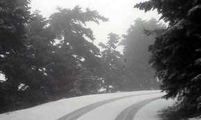Χιονίζει στην Πάρνηθα αυτή την ώρα– Πού θα το στρώσει μέχρι το πρωί!(βίντεο)