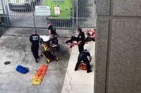 Eπίθεση ενόπλου στο αεροδρόμιο της Φλόριντα: Πέντε νεκροί και εννέα τραυματίες (upd)(φωτo,βίντεο)