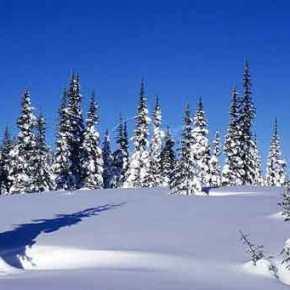 Μετεωρολογική «βόμβα» από την Πέμπτη μέχρι την Κυριακή: Μέχρι και 15 βαθμοί Κελσίου κάτω – Ο υδράργυρος στο -20 στις ορεινέςπεριοχές