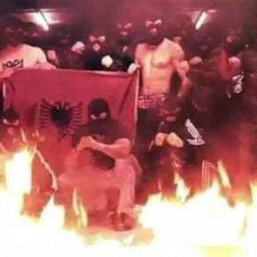 Κατσαπλιάδες τρομοκρατούν τα χωριά των Ιωαννίνων: «Βρισκόμαστε στο έλεος Αλβανών κακοποιών» λένε οικάτοικοι