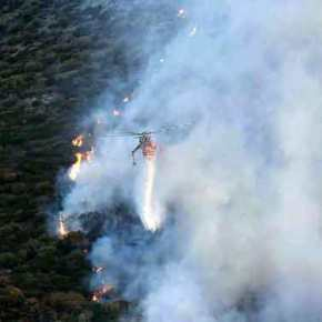 Σε ύφεση η πυρκαγιά στην περιοχή του Λαγονησίου, 4 πυροσβέστεςτραυματίστηκαν