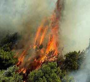 «Φλέγεται» η Αττική τρίτη συνεχόμενη μέρα: Δεν ελέγχεται η φωτιά στο Καπανδρίτι- Οι φλόγες «κατεβαίνουν» στηνΜαλακάσα