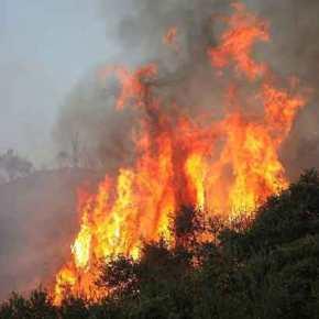 Φλέγεται η Κρήτη! – Πυρκαγιές και σε Ηλεία, Κιάτο και Αυλώνα – Δεκάδες τα πύρινα μέτωπα σε τέσσερα σημεία τηςχώρας