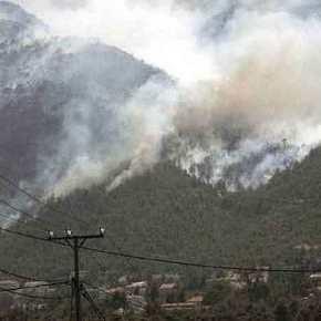 Φωτιά ΤΩΡΑ στην Πεντέλη – Νέος συναγερμός στηνΠυροσβεστική