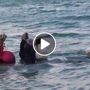 ΝΟΜΙΖΕΙΣ…. Νομίζεις ΚΟΡΟΪΔΟ ότι είναι «πρόσφυγες» που κινδυνεύουν στην Θάλασσα… ΒΙΝΤΕΟ ΑΠΟΚΑΛΥΨΗ από την Ιεράπετρα….