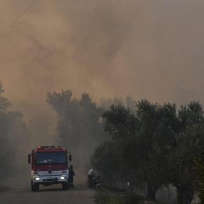 Εύβοια: Κερδίζεται η μάχη με τις φλόγες – Σώθηκαν τα σπίτια – Αυταπάρνηση τωνπυροσβεστών