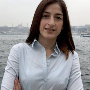 Τόλου: Δεν έχει αλλάξει τίποτα στην Τουρκία για τα ανθρώπιναδικαιώματα