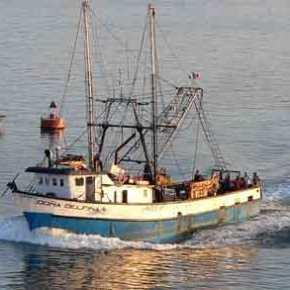Συνεχίζεται η «εισβολή» των Τούρκων στο Αιγαίο με… ψαράδες – Οργανωμένο σχέδιο της Άγκυρας & τηςΜΙΤ