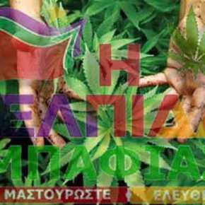 Δίνουν «γην και ύδωρ» για την καλλιέργεια τηςκάνναβης