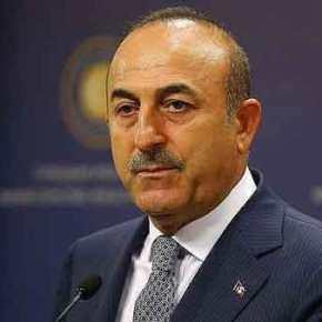 Απάντηση κόλαφος στον Τσαβούσογλου για τη Γενοκτονία των Ποντίων από Τούρκουςεπιστήμονες!