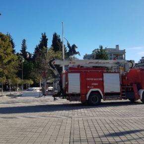 Τραγωδία στον Αυλώνα μετά από πυρκαγιά – Βρέθηκε απανθρακωμένος άνδρας μέσα σεαυτοκίνητο