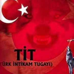«Κύμα» βίας εξαπολύει ο Ερντογάν: Δράσεις παραστρατιωτικών οργανώσεων εντός και εκτόςΤουρκίας