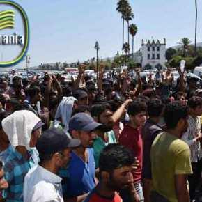 Μόρια: Λαθρο-Μετανάστες με σπαθιά και δρεπάνια – Επίθεση σε αστυνομικό για να αποτρέψουν τον έλεγχο…!!ΦΩΤΟ