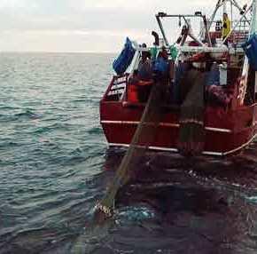 Xίος και Λέσβος είναι «περικυκλωμένες» από στόλο τουρκικών αλιευτικών: Καμία αντίδραση από τηνΑθήνα
