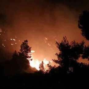 Βιβλική καταστροφή από τον ασυνείδητο που έκαψε τα κλαδιά του: Μαίνεται η φωτιά, πηγαίνει προς ταΜέγαρα
