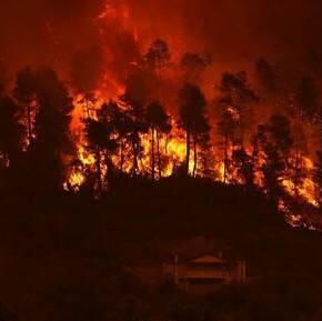 Φωτιές: Το μέγεθος της καταστροφής σε αριθμούς – Πάνω από 650.000 στρέμματακαμένα