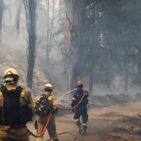 Φωτιά στο Τατόι: Δυσκολεύει η κατάσταση – Σε κίνδυνο τα οχήματα της Βασιλικής Οικογένειας αξίας εκατομυρίωνευρω